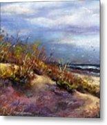 Beach Dune 1 Metal Print by Peter R Davidson