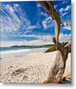 Beach View Carmel By The Sea California Metal Print by George Oze
