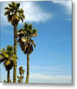 Beach View With Palms And Birds Metal Print by Ben and Raisa Gertsberg