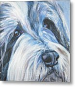 Bearded Collie Up Close In Snow Metal Print by Lee Ann Shepard