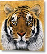 Bengali II Metal Print by Lawrence Supino