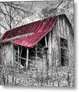 Big Red Metal Print by Debra and Dave Vanderlaan