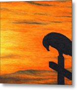 Bird Of Pray Metal Print by Don McMahon