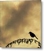 Bird On Branch Montage Metal Print by Dave Gordon