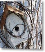 Birdhouse Brambles Metal Print by Lauri Novak