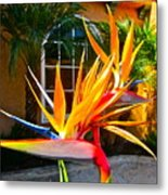 Birds In Paradise Metal Print by Gwyn Newcombe