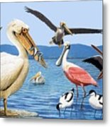 Birds With Strange Beaks Metal Print by R B Davis