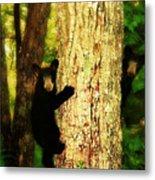Black Bear Cubs Metal Print by Gray  Artus
