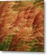 Blowing In The Wind Metal Print by Gaby Swanson