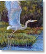 Blue Heron In Flight Metal Print by Susan Jenkins