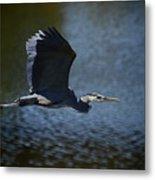 Blue Heron Skies  Metal Print by Saija  Lehtonen