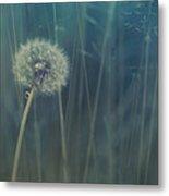 Blue Tinted Metal Print by Priska Wettstein