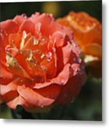 Brass Band Roses Metal Print by Rona Black