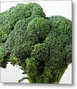 Broccoli Metal Print by Robert Ullmann