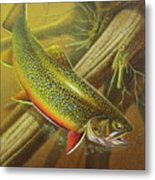 Brook Trout Cover Metal Print by JQ Licensing
