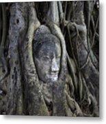 Buddha Head In Tree Metal Print by Adrian Evans
