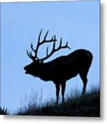 Bull Elk Silhouette Metal Print by Larry Ricker