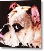 Bulldog Art - Let's Play Metal Print by Sharon Cummings