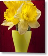 Bunch Of Daffodils Metal Print by Garry Gay