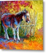 Burro And Bouganvillia Metal Print by Marion Rose