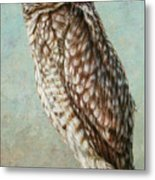 Burrowing Owl Metal Print by James W Johnson