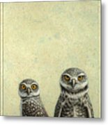 Burrowing Owls Metal Print by James W Johnson