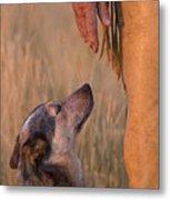 Buster And Dawg Metal Print by Carol Walker