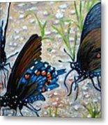 Butterflies Original Oil Painting Metal Print by Natalja Picugina