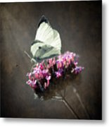Butterfly Spirit #02 Metal Print by Loriental Photography