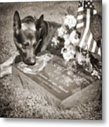Buy A Print. Show Your Support For Reading K9 Police.  Willow Street Pictures.  Metal Print by Darren Modricker