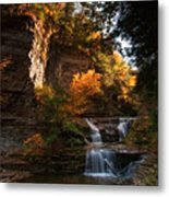 By Dawn's Early Light Metal Print by Neil Shapiro