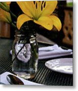 Casual Affair Metal Print by Linda Knorr Shafer