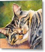 Cat Nap Metal Print by Bonnie Rinier