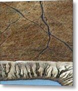 Cattle Tracks Metal Print by Tim Nichols