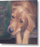 Charlie's In The Doghouse Metal Print by Diane Caudle