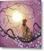 Cherry Blossom Waltz  Metal Print by Laura Iverson