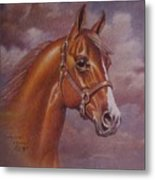 Chestnut Quarter Horse Metal Print by Dorothy Coatsworth