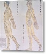 Chinese Chart Of Acupuncture Points Metal Print by Everett
