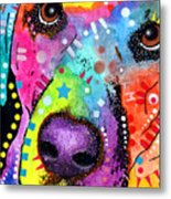 Closeup Labrador Metal Print by Dean Russo