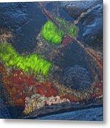 Coastal Floor At Low Tide Metal Print by Heiko Koehrer-Wagner