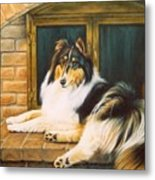 Collie On The Hearth Metal Print by Karen Coombes