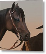 Companions Metal Print by Corey Ford