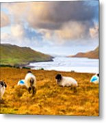 Connemara Sheep Grazing Over Killary Fjord Metal Print by Mark E Tisdale