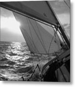 Coquette Sailing Metal Print by Dustin K Ryan