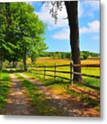 Country Road Metal Print by Catherine Reusch  Daley