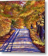 Country Road Metal Print by David Lloyd Glover