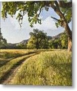 Country Road Metal Print by Sharon Foster