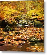 Creek In The Woods Metal Print by Kathy Jennings