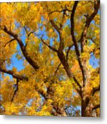 Crisp Autumn Day Metal Print by James BO  Insogna