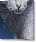 Cropped Cat 5 Metal Print by Carol Wilson